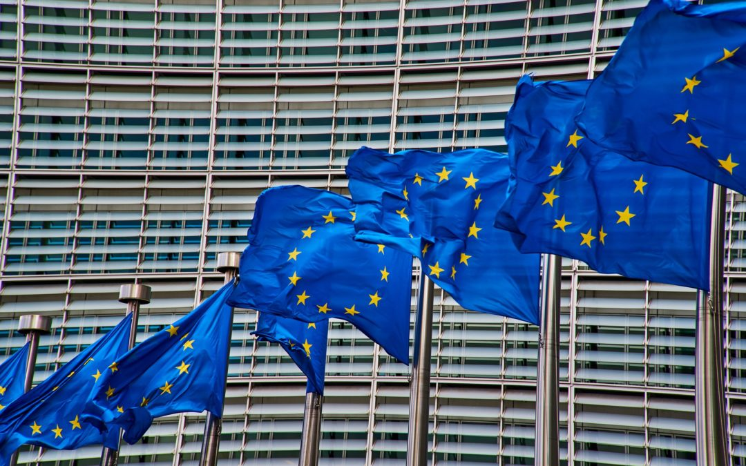 Mon expérience de traductrice au Parlement européen
